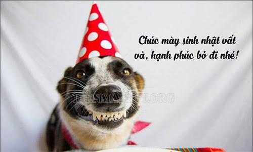 lời chúc sinh nhật hay nhất