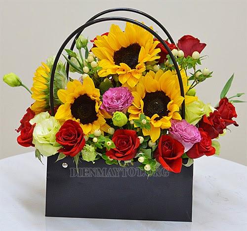 Ý nghĩa hoa hướng dương trong ngày 20-11