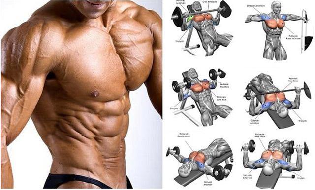 Tập luyện nâng cơ ngực