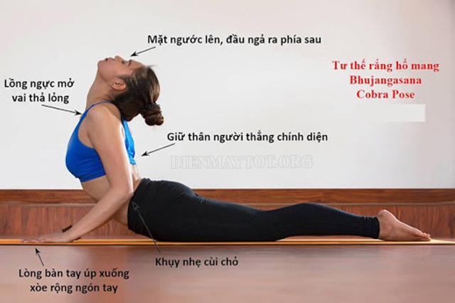 Bài tập yoga chữa rối loạn nội tiết tố - tư thế rắn hổ mang