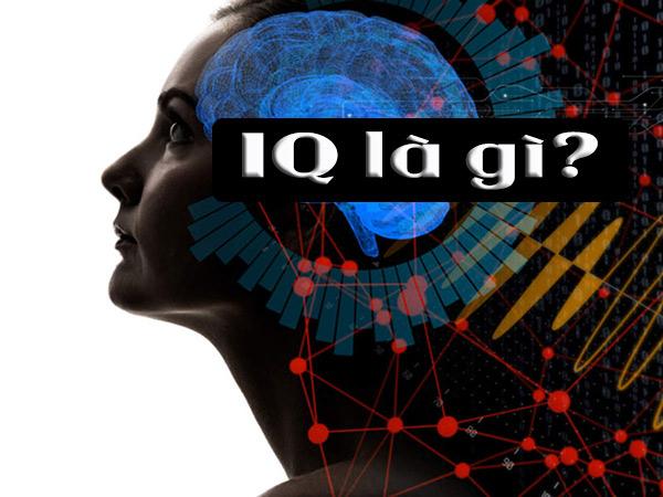 IQ là gì? Chỉ số IQ là gì?